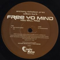 Anthony Nicholson - Free Yo Mind