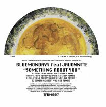 Blue Mondays feat Javonntte – Something about you (Vincent Floyd, Patrick Gibin, G&D Remixes)