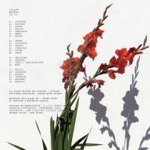 Cyclades feat. Modern House Quintet - Bellezza