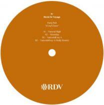 Dana Ruh - 4 Leaf Clover (Molly remix)