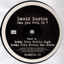 David Duriez - Can You Feel It?