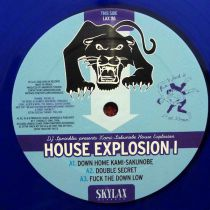 DJ Sprinkles Presents K.S.H.E - House Explosion I [Repress]