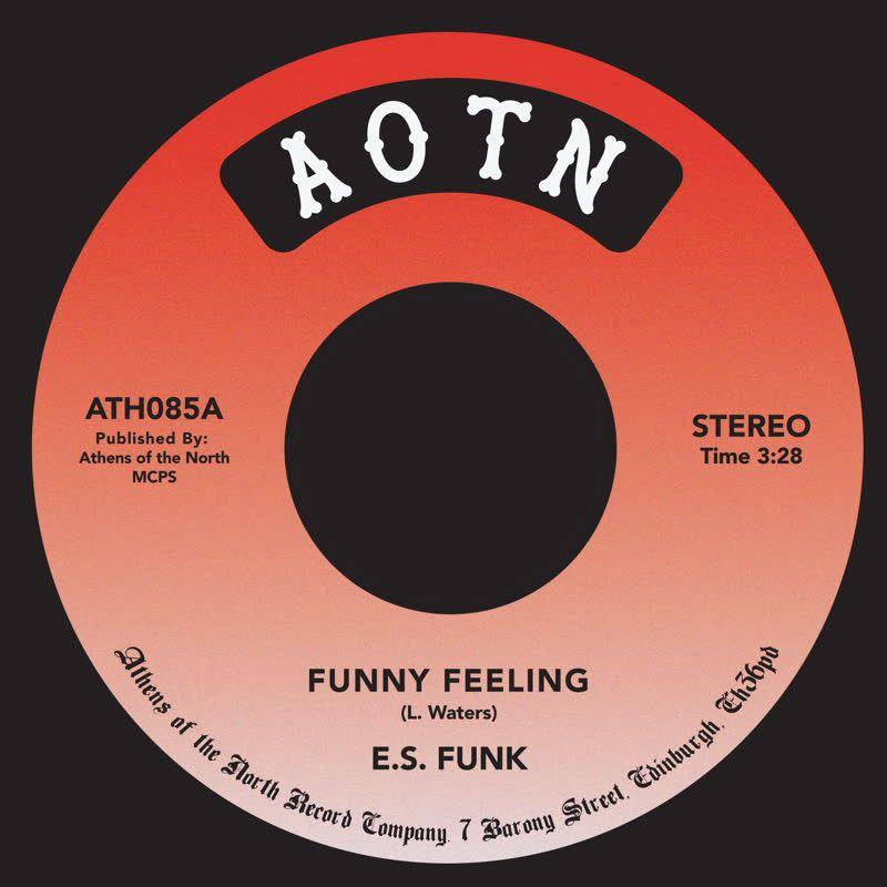 E.S. Funk - Funny Feeling