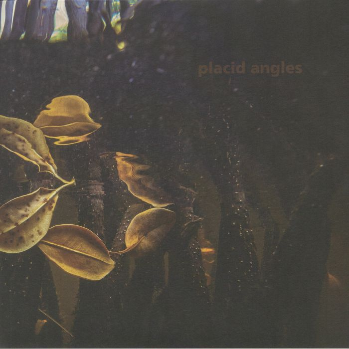 Placid Angles - Touch The Earth