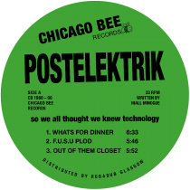 Postelektrik - So We All Thought We Knew Technology
