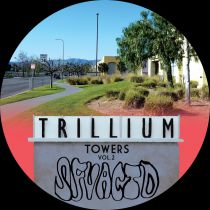 SFV Acid - Trillium Towers Vol.2