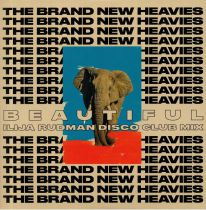 The Brand New Heavies - TBNH (Ilija Rudman Mixes)