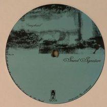 Theo Parrish - Overyohead