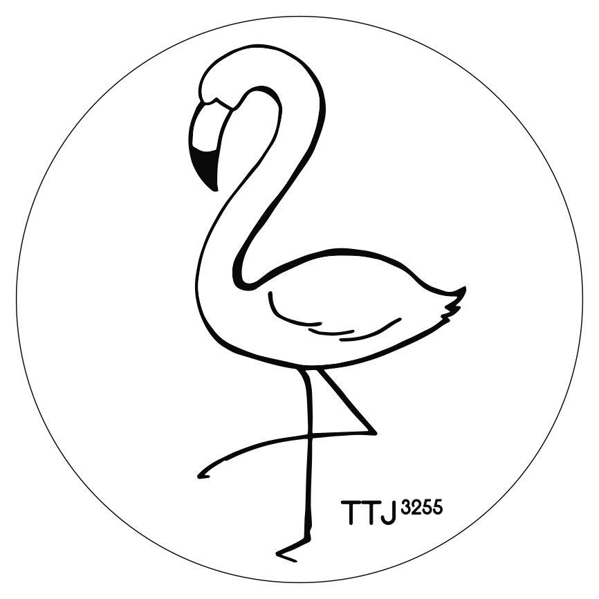 Various Artists - TTJ#3255