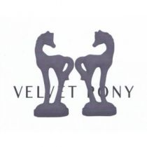 Various Artists - Velvet Pony Tracks 9